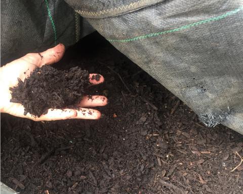 compost2