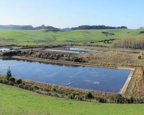IMG_7718 9.55 sewage ponds