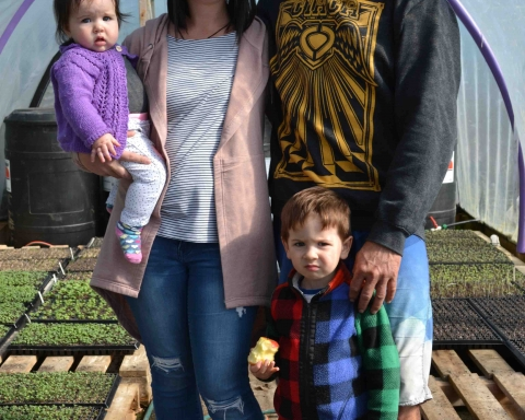 Growing fresh produce is a labour of love for the Robinson family.